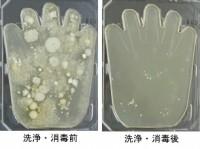 fukitori1